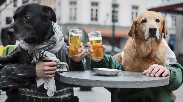 dog-people